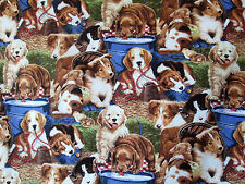 Puppies in Barn Dogs Animal David Textiles Cotton Fabric #2256 By the Yard