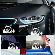 Funny Novelty Grumpy Cute Cat For JDM Auto Car/Window Vinyl Decal Sticker Decals