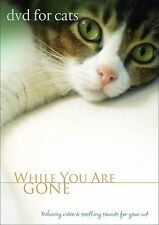 DVD FOR CATS: Cat Sitter, Cat VIDEO FOR CATS, Cat DVD -  NEW UNOPENED