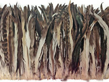 2.5  Inch Strip -  Natural Brown Chinchilla Mix Coque Tail Strung Feathers, 1...