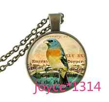 Vintage birds Cabochon bronze Glass Chain Pendant Necklace &XP-767