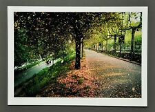 William Albert Allard Ltd. Ed. Photo 17x24 Valentino Park Turin 2002 Torino Arte