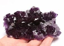 190g NATURAL Unique Purple Cubic FLUORITE Crystal Mineral Specimen Rare
