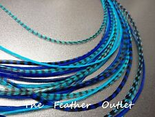 Lot 10 Turquoise blue Grizzly Feathers Hair Extensions long Real ROYAL TURQ