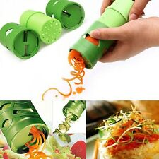 Fruit Vegetable Salad Curl Slicer Cucumber Carrot Turning Cutter Kitchen Tools