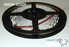 12VDC SMD5050 LED strip 4000K-4500K, 5m (72W, 300LEDs), IP20, 60LEDs/m, 14.4W/m