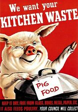 War Art Poster We want your kitchen waste Pig Food
