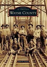 Images of America: Wayne County by James E. Casto (2015, Paperback)