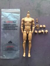 COO Models Muscle Male High Tall Body 2.0 BD004 1/6th scale NEW