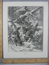 Rare Antique Original VTG Wolf Snow Trees North Forest Illustration Art Print