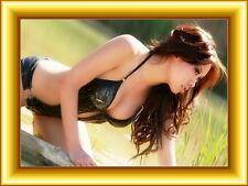 Photo F-060b Image, Picture, Wallpaper 1600 X 1200 Pixels Fast Free Shipping !!!