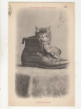 Bootles Baby 1907 Cat Postcard FA Bourne 265b
