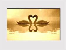 313 X LARGE CANVAS 18''x 32'' WALL COUPLE LOVING SWAN LAKE SEPIA PRINT PICTURE