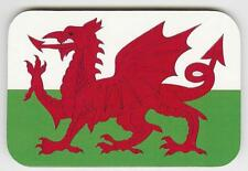 Jumbo Welsh Dragon Coaster