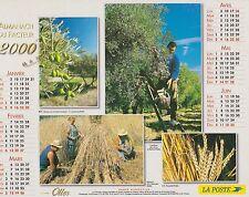 CALENDRIER ALMANACH des postes PTT 1999 scènes de campagne oliviers cueillette