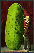 Exaggerated WATERMELON with OLD GRAY BEARDED MAN~ORIGINAL 1910s MINT POSTCARD
