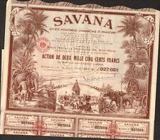 TOP DECO =  SAVANA (BORDEAUX PONDICHÉRY INDE) (L)