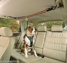 Auto Zip Line and Leash Combo Works with all Car Seatbelts