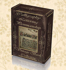 165 Vintage Book Calligraphy Lettering Penmanship Typography Sign Writer DVD 271