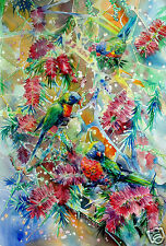 print,original watercolour,Rainbow Lorikeet,birds,native tree,Australian art