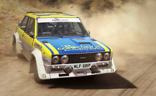 Dirt Rally PC [Steam Key] NO DISC OR BOX INCLUDED Region Free