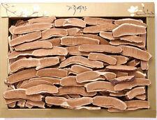 500g Korean Lingzhi Mushroom Slice Dried Tea reishi Ganoderma lucidum Health