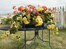 "24"" Window Box Custom Geraniums Yellow Petunia Cottage Shabby Chic High End"