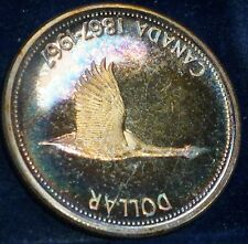 TONED  Canada Silver Dollar Flying Goose. BEAUTIFUL COLOURS