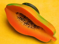 Papaya Pawpaw Fruit Food Vegetable Refrigerator 3D Fridge Magnet
