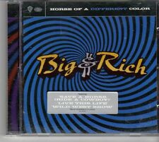 (EU797) Big & Rich, Horse Of A Different Color - 2004 CD