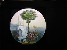 9 trees plants botany hand painted wood framed magic lantern slides by Newton