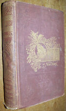 1897 ANTIQUE DARKNESS DAYLIGHT BOOK NYPD NY NEW YORK CITY POLICE CIVIL WAR