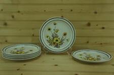 Arklow Brendan WILD FLOWERS (6) Salad Plates | Erin Stone | Ireland No. 8162