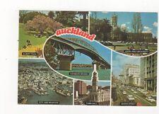 Auckland New Zealand Postcard 521a