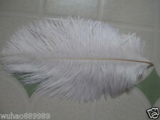 10 pcs Beautiful white ostrich feathers 15-20 cm 6-8 inches Free Shipping
