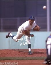 MIKE MARSHALL in action Los Angeles Dodgers Photo Dr