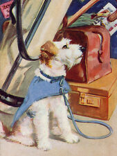 WIRE FOX TERRIER CHARMING DOG GREETINGS NOTE CARD CUTE DOG WAITS WITH GOLF BAG