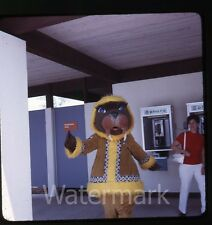 1970s Amateur  kodachrome Photo slide Sea World Florida #4 costume pay phone