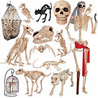 Crazy Bonez Bones Skeleton Halloween Scary Party Garden Yard Decoration Props