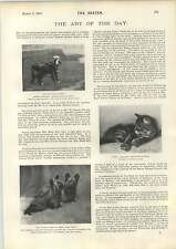 1898 Mlle Marguerite Cornille At The Tivoli Animal Paintings