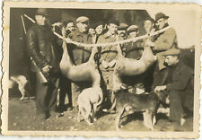 PHOTO ANCIENNE - VINTAGE SNAPSHOT - CHASSE CHASSEUR CHIEN TROPHÉE - HUNTING DOG