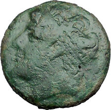 Syracuse in Sicily 240BC King Hieron II Horseman Large Ancient Greek Coin i33809