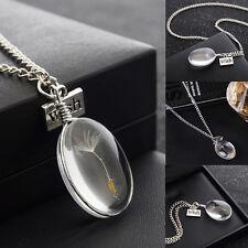 Oval Anhänger Halskette Natürliche Getrocknet Blüten Löwenzahn -Make A Wish Real