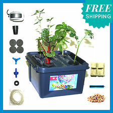 Northy's X-QUAD mini HYDROPONIC Deep Water Culture (DWC) GROW SYSTEM