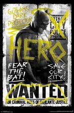 BATMAN VS SUPERMAN - FEAR THE BAT POSTER - 22x34 - NEW MOVIE 14066