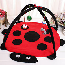 Cotton Kitten Cat Bed Hammock Tent Cat Pad Activity Bed Play Bed w/ Hanging Toys