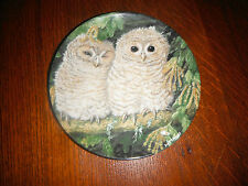 Wedgwood Baby Tawny Owls by Dick Twinney Plate With Hanger.