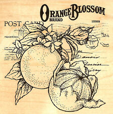 Orange Blossom Post Card Collage Wood Mounted Rubber Stamp Stampendous NEW W086