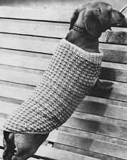 VINTAGE KNITTING PATTERN FOR A SMALL DOG / DACHSHUND COAT - DK