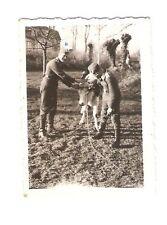 Altes Foto Bild Deutsches Reich 2. Weltkrieg 2 Soldaten und eine Kuh [172]